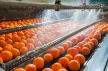AFTERLIFE is a BBI JU project transforming wastewater from food and drink industry into bioplastics and food additives.