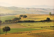 EU Green Week: Bio-based industries and the green recovery
