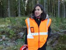 EFFORTE project – Efficient forestry for sustainable and cost-competitive bio-based industry
