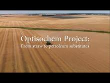 From straw to bio-based substitutes of petroleum