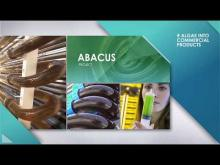 Comprehensive explanation of the BBI JU ABACUS project.